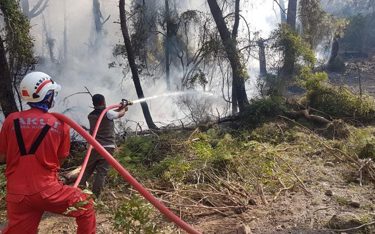 AKUT, Akdeniz yangınında 250'yi aşkın cana destek oldu