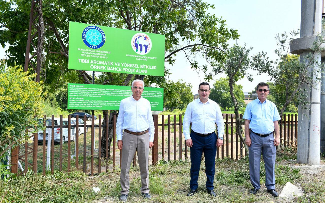 Bursa'da 'Tıbbi ve aromatik bitkiler bahçesi' örnek olacak
