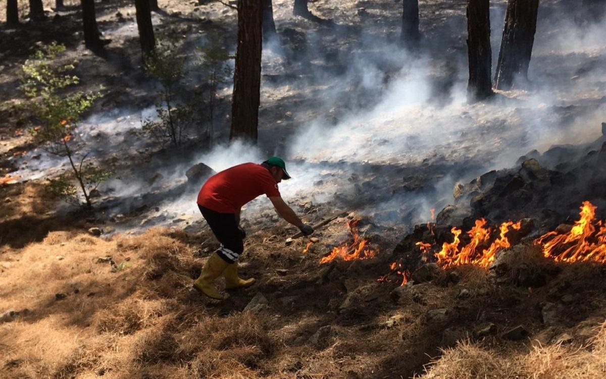 Türkiye'deki orman yangınlarında yeni risk